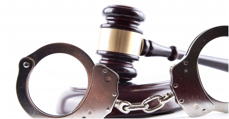 Paralegal Sent to Jail for Causing 'Grievous Hurt' to Maid